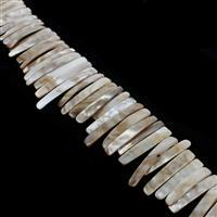 Brown/White Shell Pearl Graduated Bars Approx 6x23-7x48mm, 38cm Strand