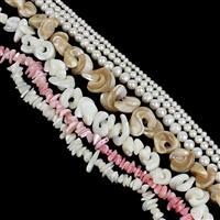 Mixed Colour Shell & Freshwater Pearl Bundle (7 strands)