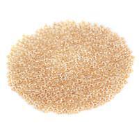 Miyuki Sparkle Metallic Gold Lined Crystal Seed Beads 8/0 (22GM/TB)