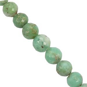 118cts Green Chrysoprase Faceted Round Approx 5.6x5.5mm to 9.2x8.5mm 30cm Strand