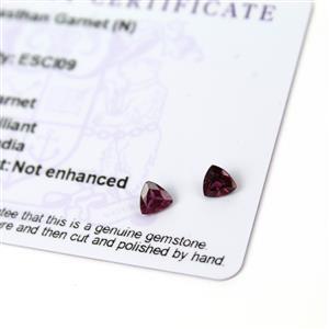 0.8cts Rajasthan Garnet 5x5mm Triangle Pack of 2 (N)