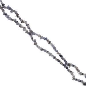 280cts Iolite Small Nuggets Approx 5x8mm, 80cm Strand