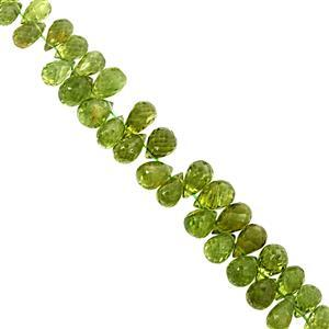 55cts Peridot Graduated Top Side Drill Faceted Drop Approx 5.5x4mm to 7.5x5.5mm, 9cm Strand with spacers