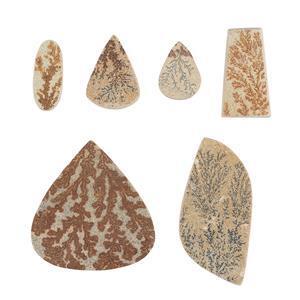 Psilomelane Dendrite Gemstones