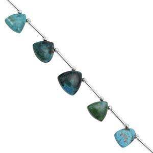 55cts Chrysocolla Graduated Plain Trilliant Approx 8 to 14mm, 15cm Strand with Spacers