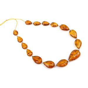 Baltic Cognac Amber Graduated Drop Beads, Approx 11x7mm-18x11mm Inc Sterling Silver Spacers 20cm Strand