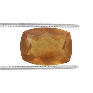 0.2cts Burmese Amber 7x5mm Cushion  (N)