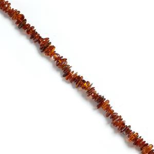 Baltic Cognac Amber Chips Approx 2x7mm to 4x11mm, 38cm Strand