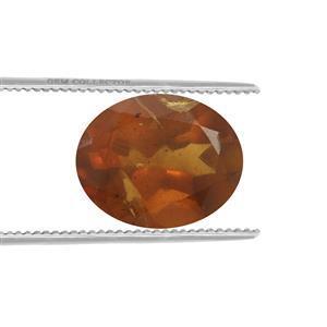 0.7cts Burmese Amber 10x8mm Oval  (N)