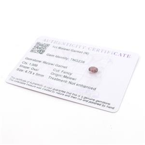 1ct Malawi Garnet Fancy Oval (N)