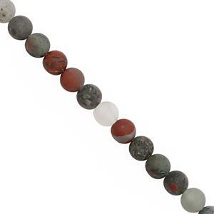 90cts African Bloodstone Matte Smooth Round Approx 6mm, 30cm Strand