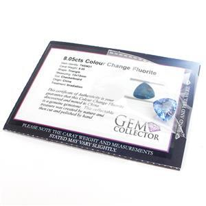 8.05ct Colour Change Fluorite Checkerboard Triangle (IR)