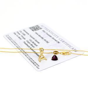Tocantin Garnet Pendant, Inc; 0.65cts Tocantin Garnet, Mount & Chain.