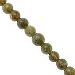 115cts Green Vesuvianite Smooth Round Approx 6 to 10mm, 19cm Strand