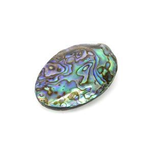Abalone Shell Single Piece Approx 30-40mm