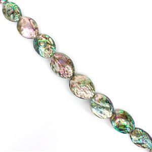 Abalone Shells Approx 38x28 to 46x32mm, 38cm strand