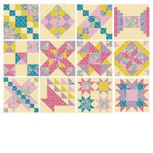 John Cole-Morgan's BOW Blocks 1-12: Blossom 'Moving on Up' Quilt Kit: Instructions & Panel
