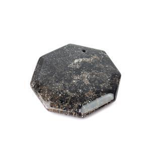 Black Fossil Jasper