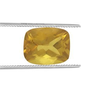 0.8cts Burmese Amber 10x8mm Cushion  (N)