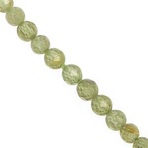 20cts Changbai  Peridot Faceted Round Approx 3mm, 30cm Strand