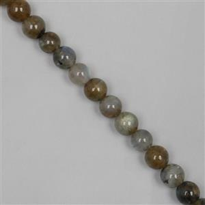 160cts Labradorite Plain Rounds Approx 8mm