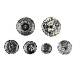 Fossil Eye Cabochon