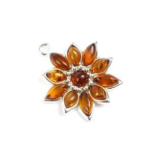 Baltic Cognac Amber Sterling Silver Pointsettia Pendant Approx 22x20mm