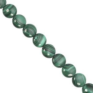 100cts Malachite Smooth Coin Approx 10mm, 20cm Strand