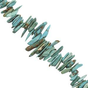 Turquoise Gemstone Strand