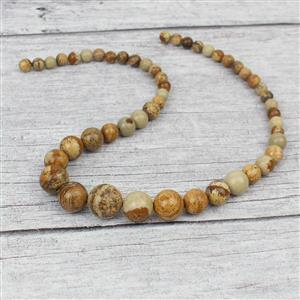 180cts Picture Jasper Graduated Rounds Approx 6-14mm, 38cm strand