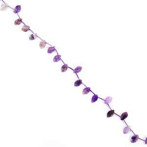 90cts Amethyst Top Drilled Marquises Approx 7x12mm, 38cm