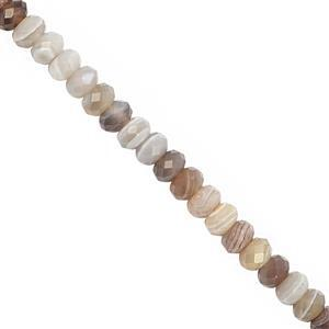 50cts Botswana Agate Faceted Rondelles Approx 5.5x3.5 to 6x4mm, 20cm Strand