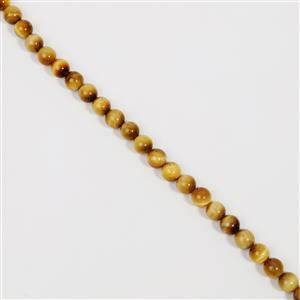 250cts Golden Tiger Eyes Plain Rounds Approx 10mm, 38cm strand
