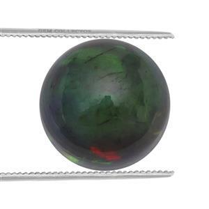 0.5cts Ethiopian Black Opal 7x7mm Round  (S)