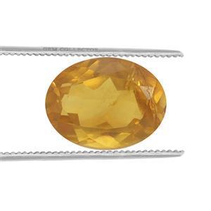 0.20cts Burmese Amber 7x5mm Oval  (N)
