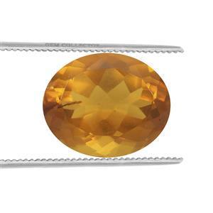1cts Burmese Amber 11x9mm Oval  (N)