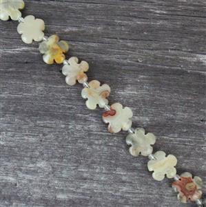 230cts Crazy Lace Agate Five-Petal Flower Appox 15mm, 27pcs/strand