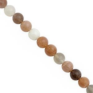 90cts Multi-Colour Moonstone Smooth Round Approx 7.50 to 8.50mm, 20cm Strand