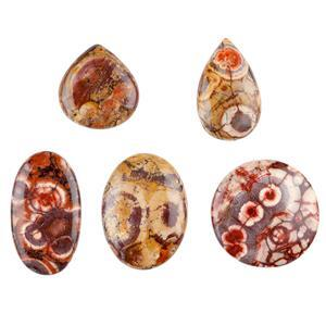 Bird Eye Jasper Cabochons