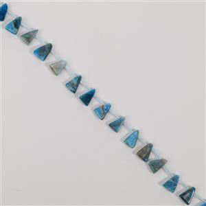 135cts Neon Apatite Top Drilled Triangle Approx 9x19mm, 38cm
