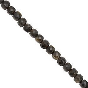 70cts Golden Obsidian Faceted Cube Approx 4.5 to 5mm 38cm Strand