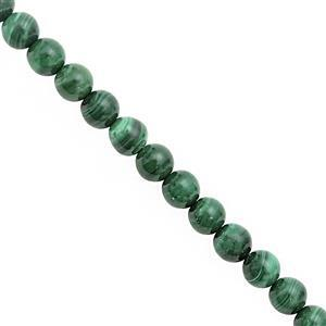 78cts Malachite Smooth Round Approx 5.50 to 6mm, 20cm Strand