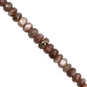 95cts Chocolate Moonstone Graduated Faceted Rondelle Approx 6x3 to 9x6mm, 21cm Strand