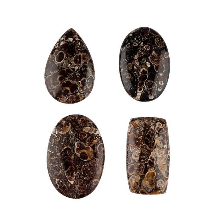 185cts Turritella Agate Multi Shape Cabochons. (Pack of 4)